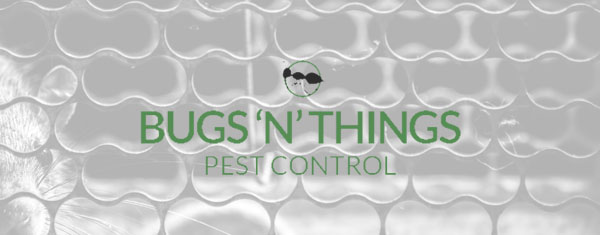 Pest control bedfordshire, hertfordshire and surrounding counties